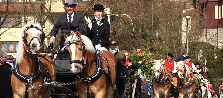 Pferdekutschen mit Pferdewägen beim traditionellen Pferdemarkt in Bad Mergentheims Innenstadt.